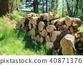 장작 직화 나무 그루터기 40871376