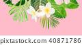 Tropical green leaves 40871786