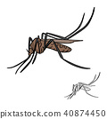brown mosquito vector illustration sketch doodle 40874450