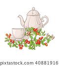 leaf fruit cranberry 40881916
