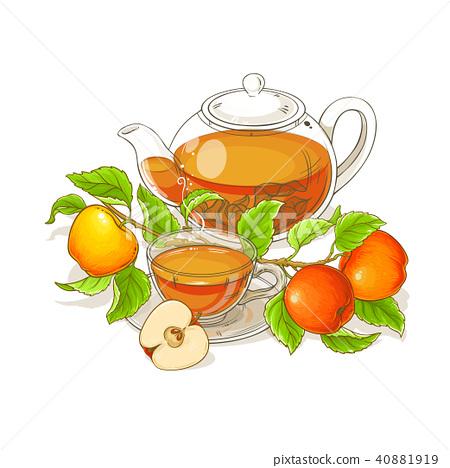 apple tea illustration 40881919