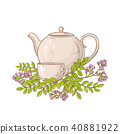 astragalus tea in teapot 40881922