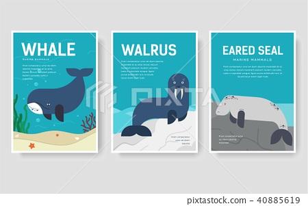Set of Sea mammals pattern concept. Art animal 40885619