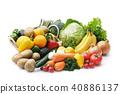 蔬菜和水果的集合 40886137