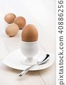 egg 40886256