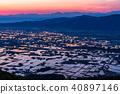 水稻 清晨 晨景 40897146