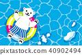 polar, bear, ursus 40902494