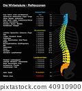 Spine Reflexology Chart German Text 40910900