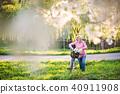 woman, senior, park 40911908