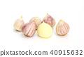 Elephant Garlic (Allium Sativum Linn.) 40915632