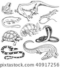 Set of reptiles and amphibians. Wild Crocodile, alligator and snakes, monitor lizard, chameleon and 40917256