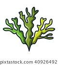 Seaweed icon, cartoon style 40926492