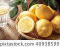 레몬 이미지 40938590