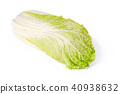 Napa cabbage, Chinese cabbage, front view 40938632