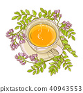 astragalus tea illustration 40943553