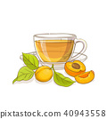 apricot, fruit, vector 40943558