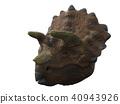 Triceratops 40943926
