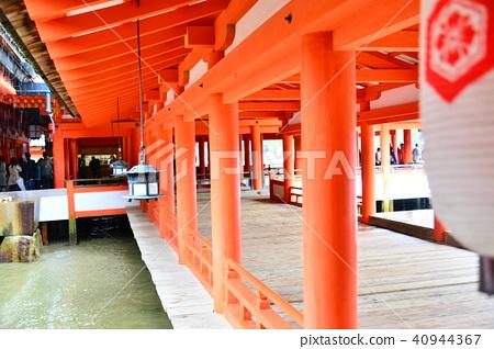 Itsukushima shrine walks 40944367