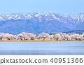 호수와 벚꽃 이른 봄 풍경 40951366