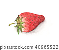 watercolor painting strawberry on white background 40965522
