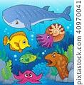 Coral fauna topic image 4 40970041