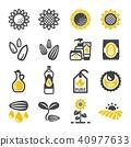 sunflower icon 40977633