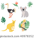 Fauna of Australia. Animal set 40978352