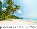 beach, coconut, ocean 40982557