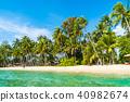 beach, coconut, ocean 40982674