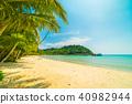 beach, coconut, ocean 40982944