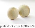 quincy melon, fruit, fruits 40987824