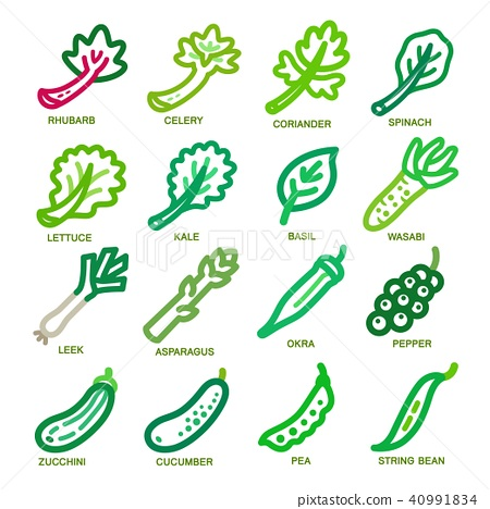 vegetable thin line icon 40991834