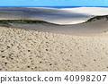 鸟取沙丘 沙丘 沙漠 40998207