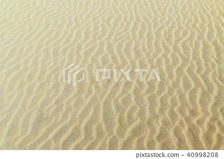 사구 (모래 언덕)의 풍문 (풍문) 사진 40998208