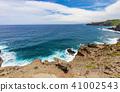 Scenic Maui Coast Landscape 41002543