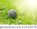 Old soccer ball on the green grass 41010070