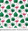 홍학, 무늬, 패턴 41013543