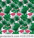 홍학, 무늬, 패턴 41013546
