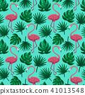 홍학, 무늬, 패턴 41013548