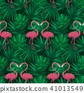 홍학, 무늬, 패턴 41013549