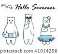 夏天 夏 北極熊 41014296