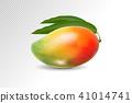มะม่วง,3,มิติ 41014741