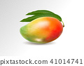 3D realistic orange red green mango on transparent background, mesh vector illustration. 41014741