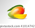 Photo-realistic vector illustration. Mango with leaf and mango slices. 41014742