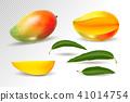 Mango realistic fruit whole and pieces illustration 41014754