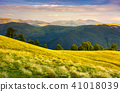 meadow, mountain, landscape 41018039