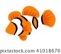 clown, fish, clownfish 41018676