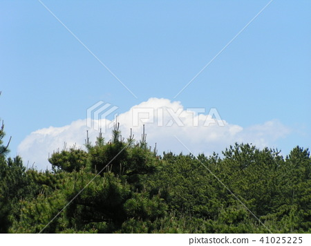 蓝天和白色云彩在初夏 41025225