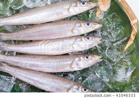 키스 생선 재료 41046333