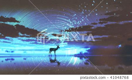 the deer walking on water 41048768